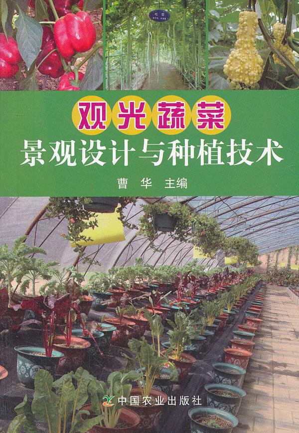 观光蔬菜景观设计与种植技术