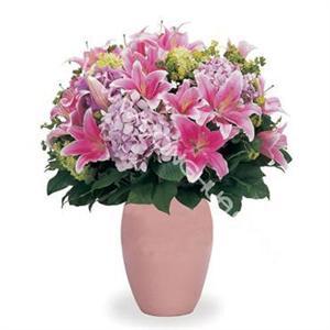 福州女生配送粉男生5枝金牛座鲜花和双鱼座百合图片