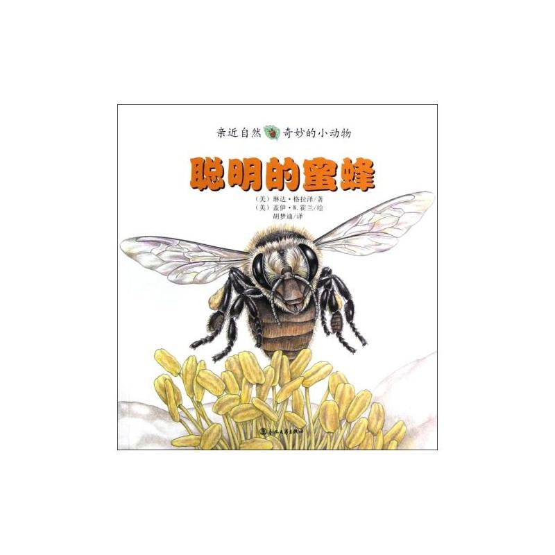 蜜蜂/亲近自然奇妙的小动物 (美)琳达·格拉泽|译者:胡梦迪|绘画:(美)