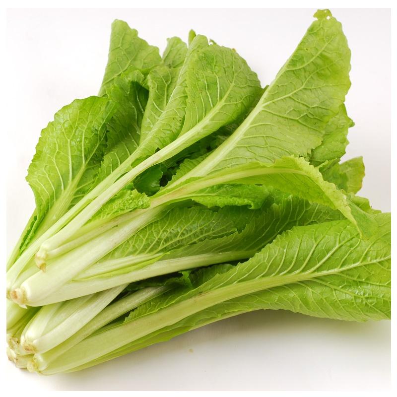 安心田园 蔬菜小白菜500g