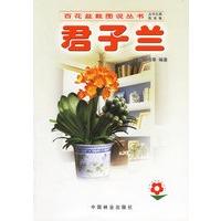 《君子兰――百花盆栽图说丛书》封面