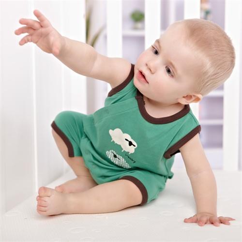 ibaby婴儿夏天欧美风童装 男宝宝背心式爬爬装新生儿有机棉哈服