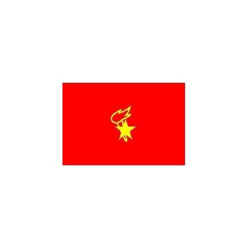 少先队的队旗是什么图案?