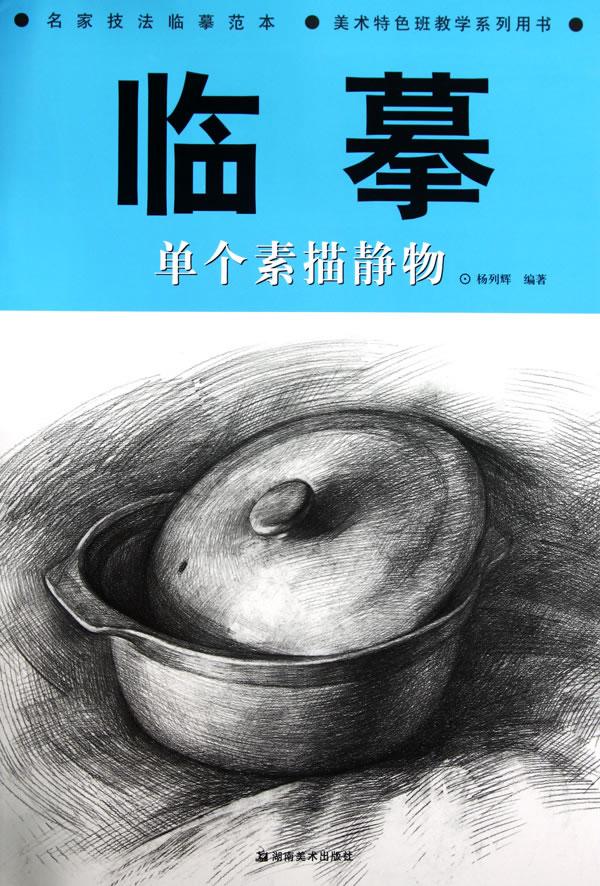 *名家技法临摹范本 美术特色班教学系列用书--临摹 单个素描静物