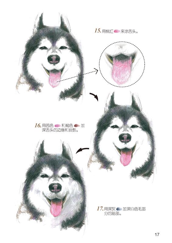 爱绘生活:狗狗的萌宠手绘集合_绘画_艺术_文艺_100%