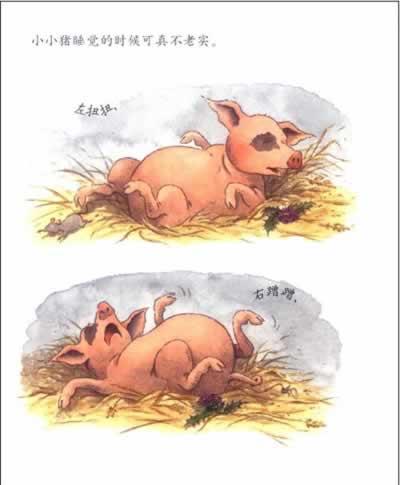 这下瞌睡虫终于转向小动物们,大家你挨我,我