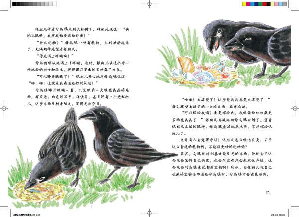 【rt4】西顿动物记—乌鸦队长银斑儿(国内动漫名家倾力打造) 欧内斯特