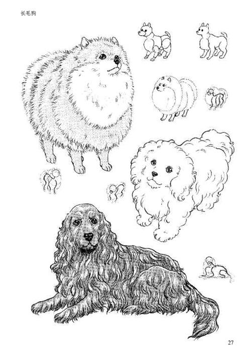 日本漫画手绘技法经典教程11:动物的画法-云仓百货