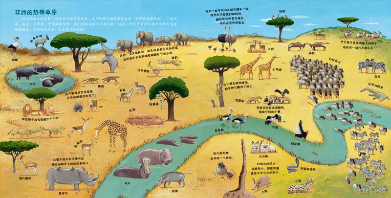 我的第一次动物大发现儿童地图绘本