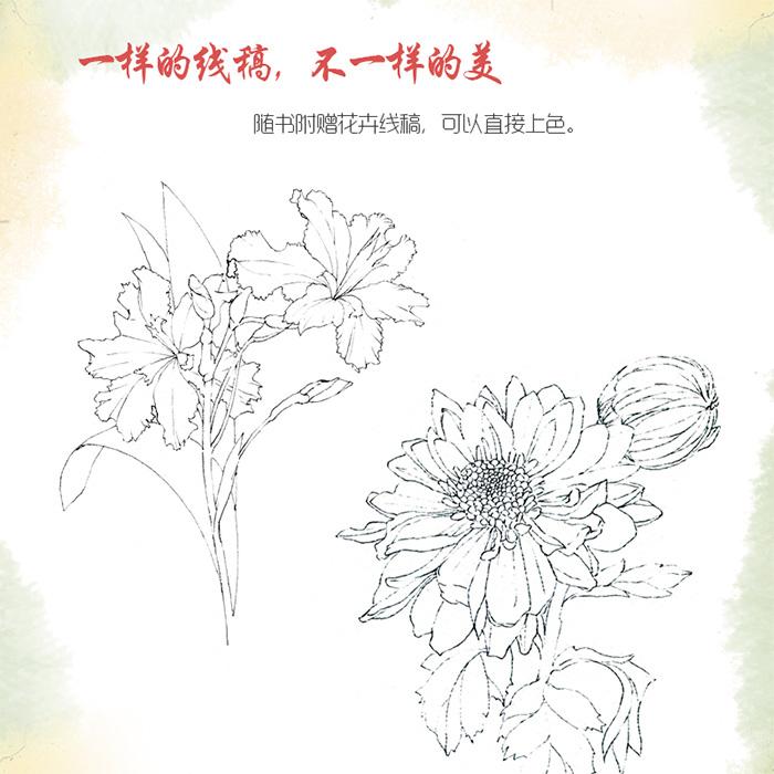 花意(古风水彩花卉技法)~~水彩版诗经绘,水彩全方位介绍,含括水彩笔
