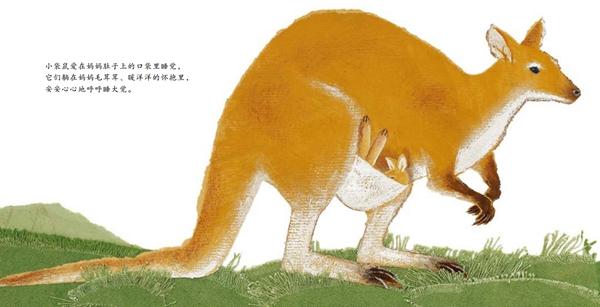 《我家有个动物园·幼儿科普起步书(全6册)》