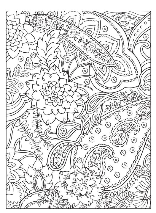 品味时尚的涂色书   本系列是以黑白线条的不同纹饰为主题,让爱好艺术