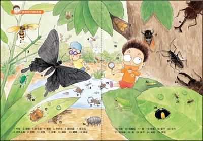 我的昆虫日记畅销韩国的儿童科普读物有趣的观察日记奇妙