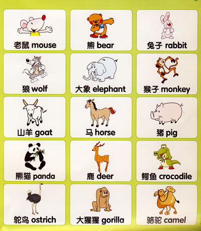 英语反义词有哪些