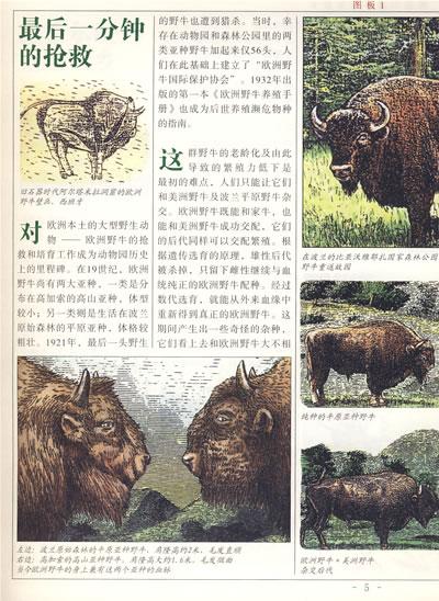 走进神奇的动物世界----动物园园长讲述的故事