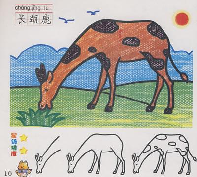 学画画:动物篇/¥0.0/单心蕾 主编/吉林摄影出版社