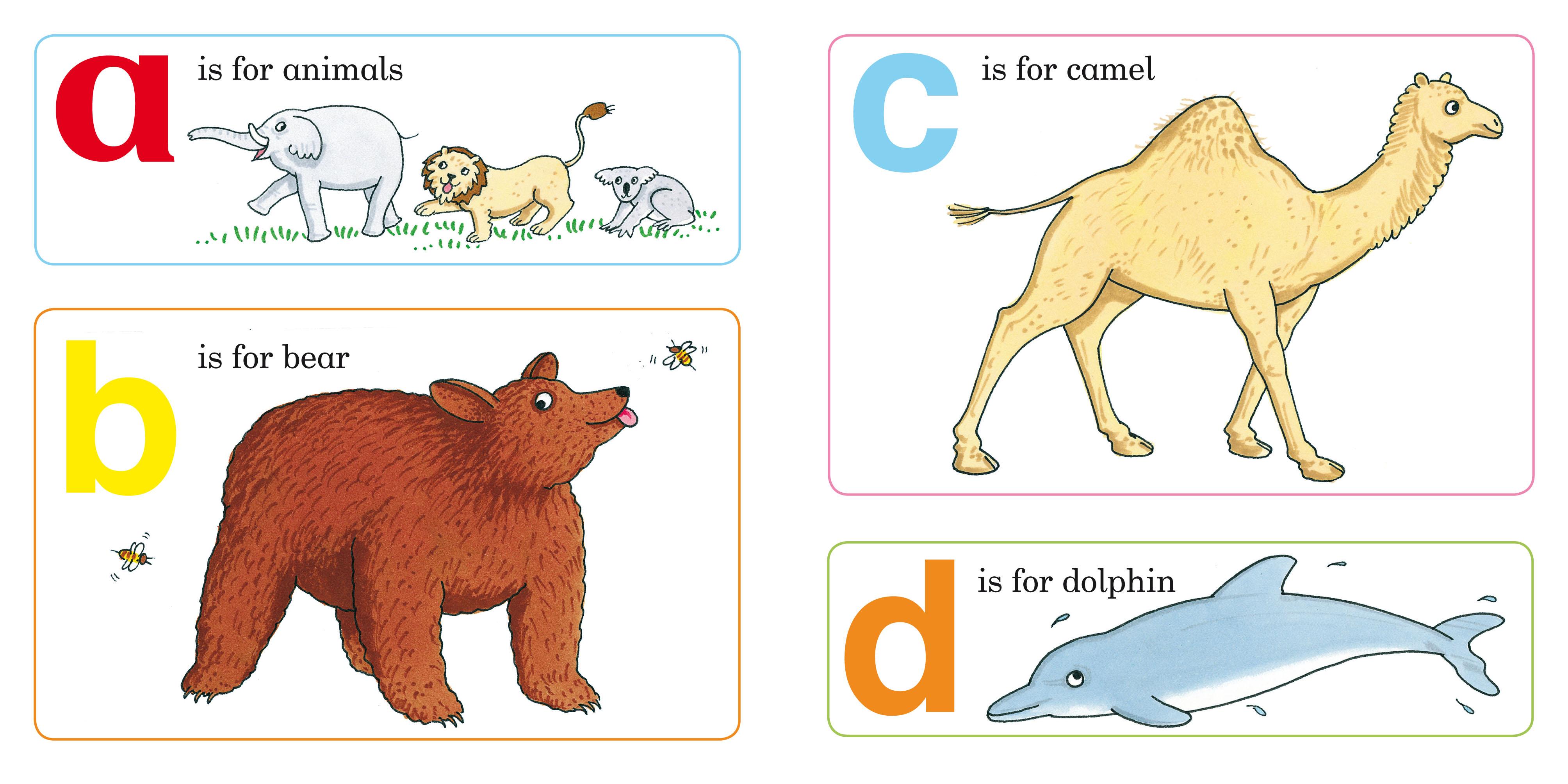 方方圆圆动物画