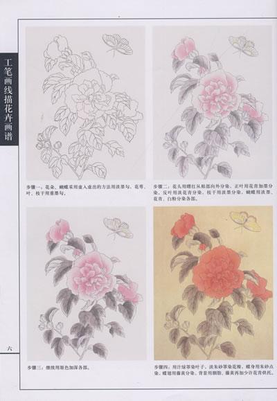 工笔画线描花卉画谱·木槿篇