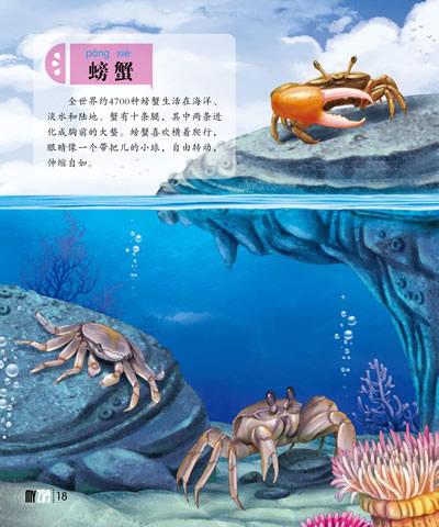 鱼和星组合手绘