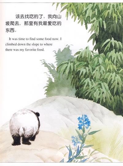 熊猫·刺猬·狐狸·猴:动物日记(中英文对照·绘本)