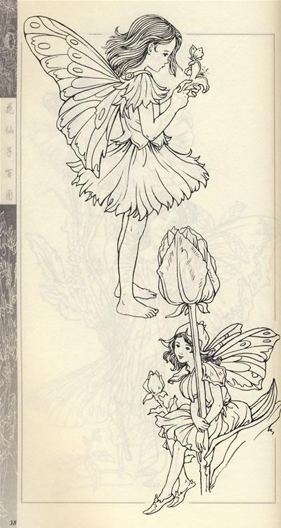 《花仙子百图——实用线描人物造型丛书》林端